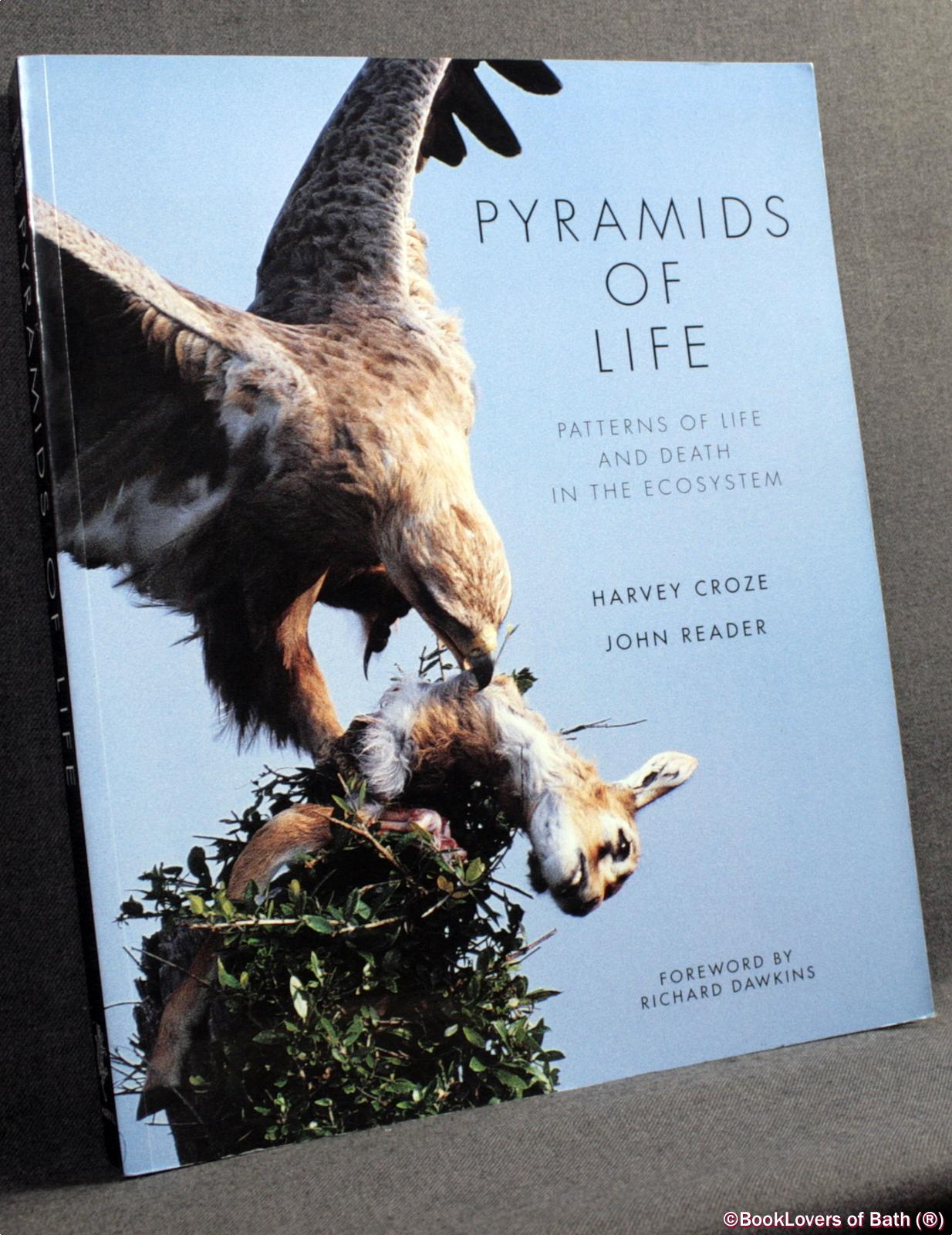 Pyramids of Life: Patterns of Life and Death in the Ecosystem - Harvey Croze & John Reader