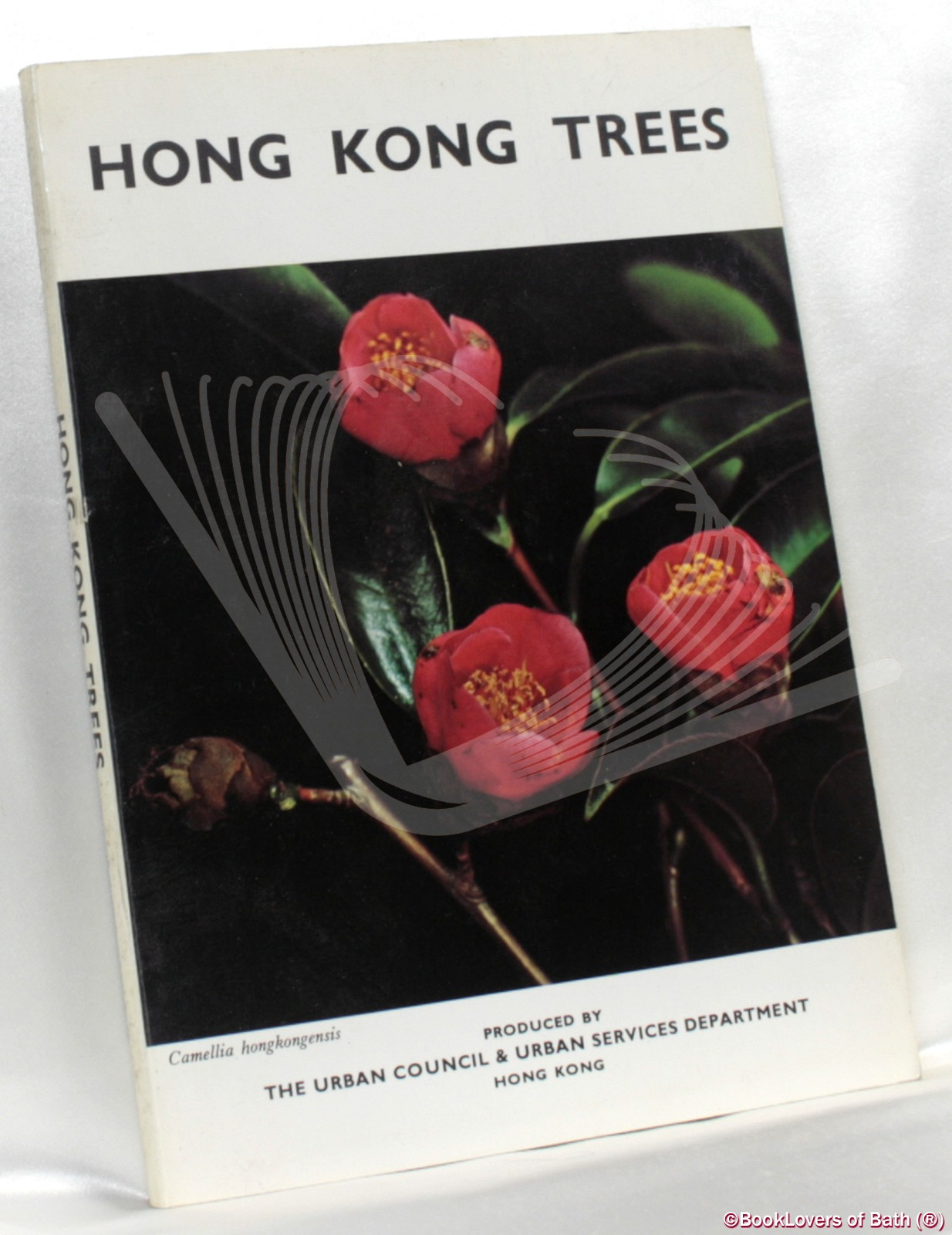Hong Kong Trees - Anon.