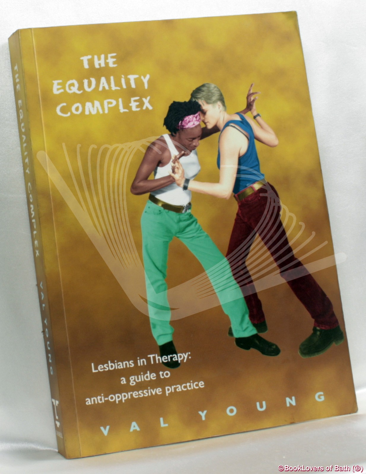 The Equality Complex: Lesbians in Therapy: A Guide to Anti-oppressive Practice - Val Young
