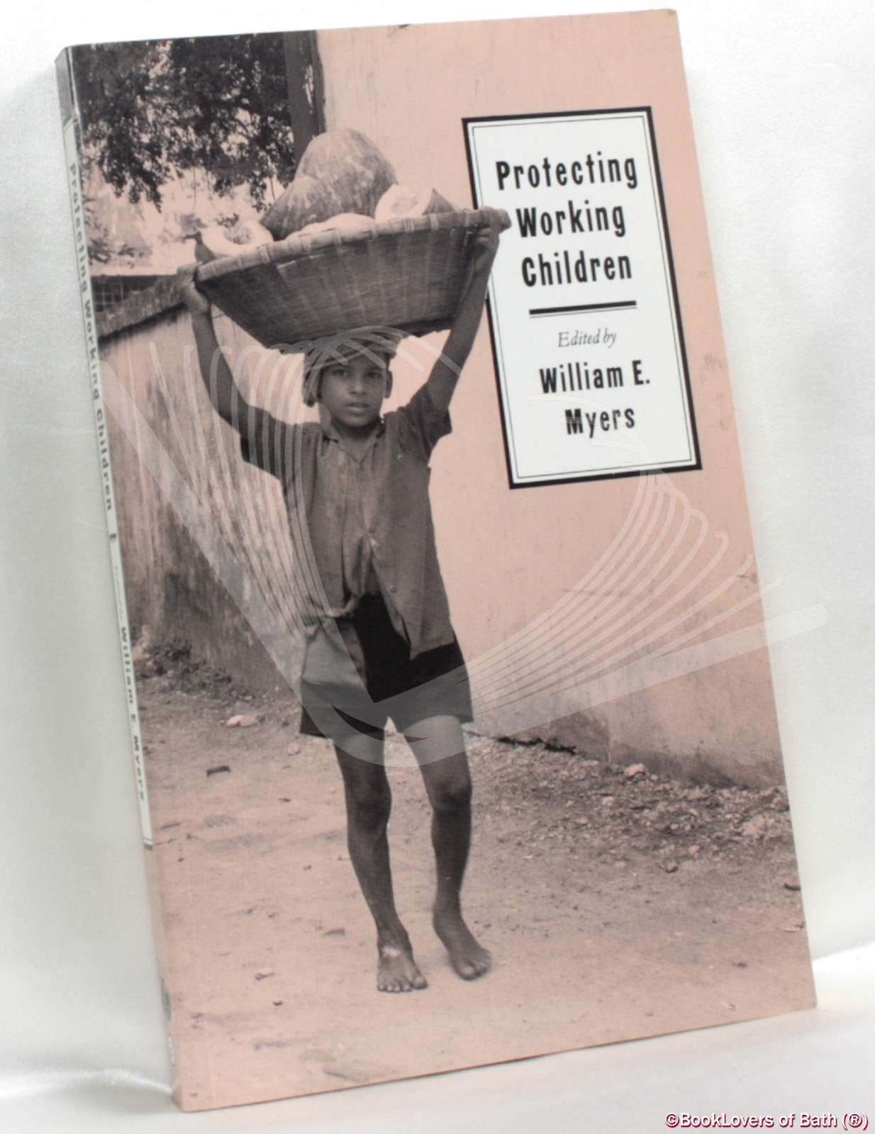 Protecting Working Children - Edited by William E. Myers