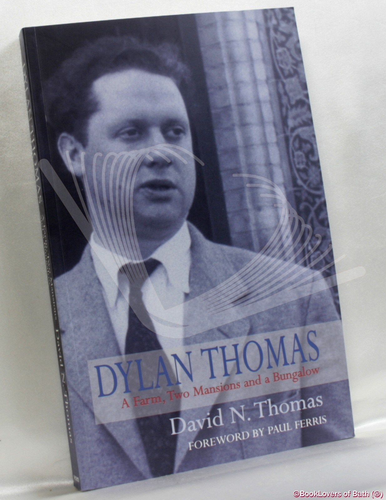 Dylan Thomas: A Farm, Two Mansions and a Bungalow - David N. Thomas