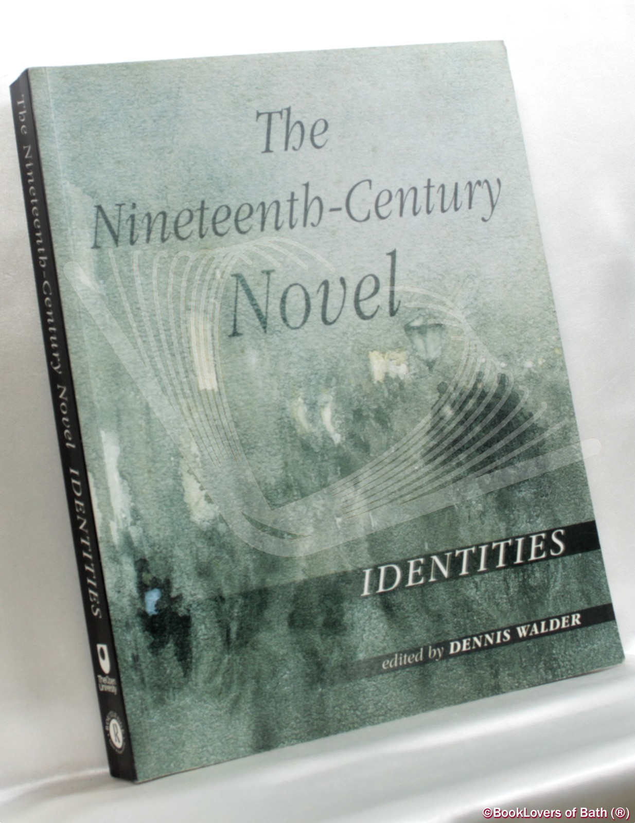 The Nineteenth-Century Novel: Identities - Edited by Dennis Walder