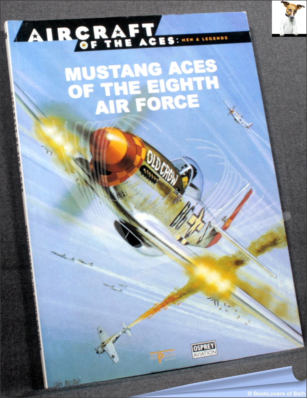 Mustang Aces of the Eighth Air Forces - Anon
